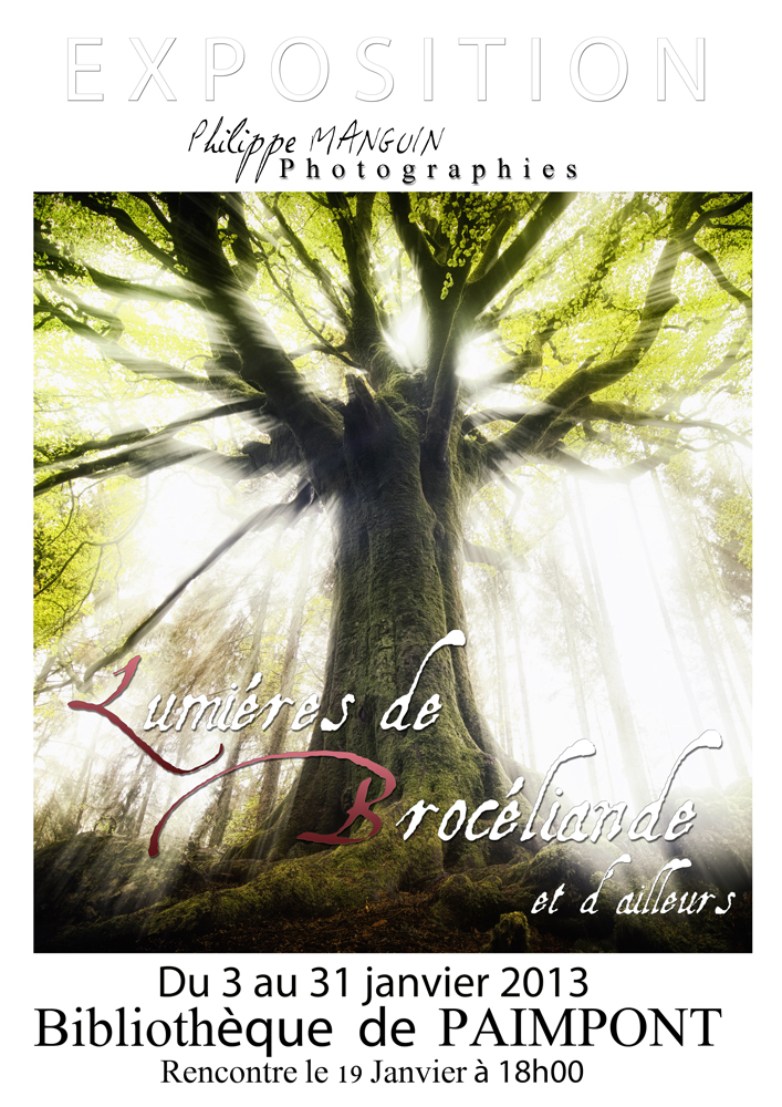 lumieres de broceliande